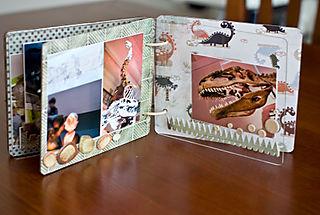 Dino mini album (6 of 6)